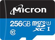 SD和microSD卡