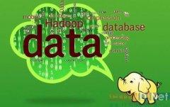 开源Hadoop发展迅猛 用户与厂商各取所需