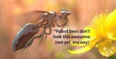 哈佛大学教授研发可替代蜜蜂的授粉机器人