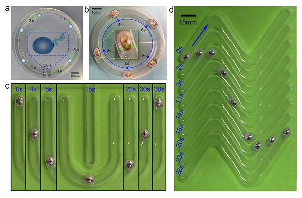 中国研制出世界首台自主运动可变形液态金属机器