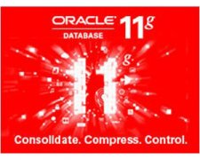 ORACLE 11G 标准版 [25用户]价格 Oracle 25用户license