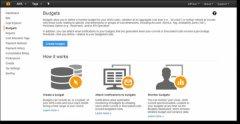 AWS发布最新云成本预算工具 助企业实现云成本控制