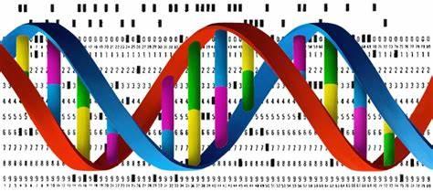 DNA存储技术研究又获突破,离实用更近一步