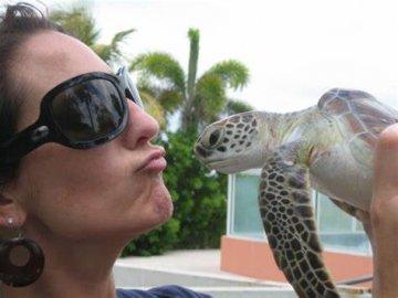 沙门氏菌再次在美爆发:CDC提醒不要亲吻宠物龟