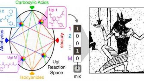 新型分子数据存储系统研究有新进展