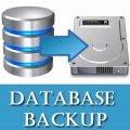 备份关键和复杂的数据库必要性