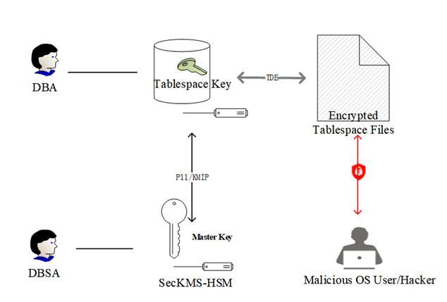 加密与防火墙 保护数据库安全