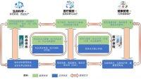 IDC《中国医疗行业IT市场预测,2021-2025》:传统的信息系统正在升级到医疗数字化转型平台